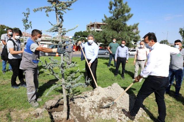 Başkan Dr. Mustafa Palancıoğlu'fidan değil, ağaç dikiyoruz'