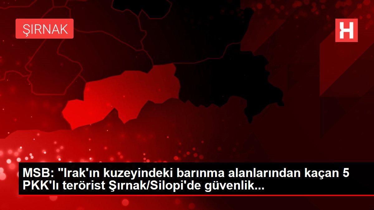 MSB: 'Irak'ın kuzeyindeki barınma alanlarından kaçan 5 PKK'lı terörist Şırnak/Silopi'de güvenlik...