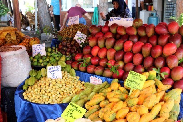 Alanya'da yetişen tropik meyveler, 350 liraya varan fiyatlarıyla dudak uçuklatıyor