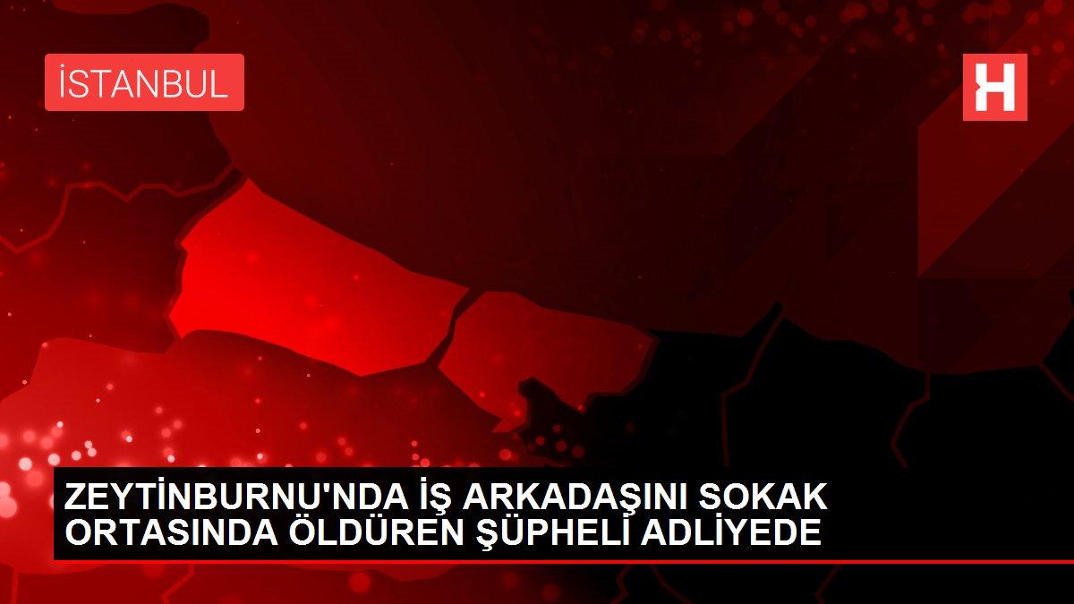 Zeytinburnu'nda iş arkadaşını sokak ortasında öldüren şüpheli adliyede
