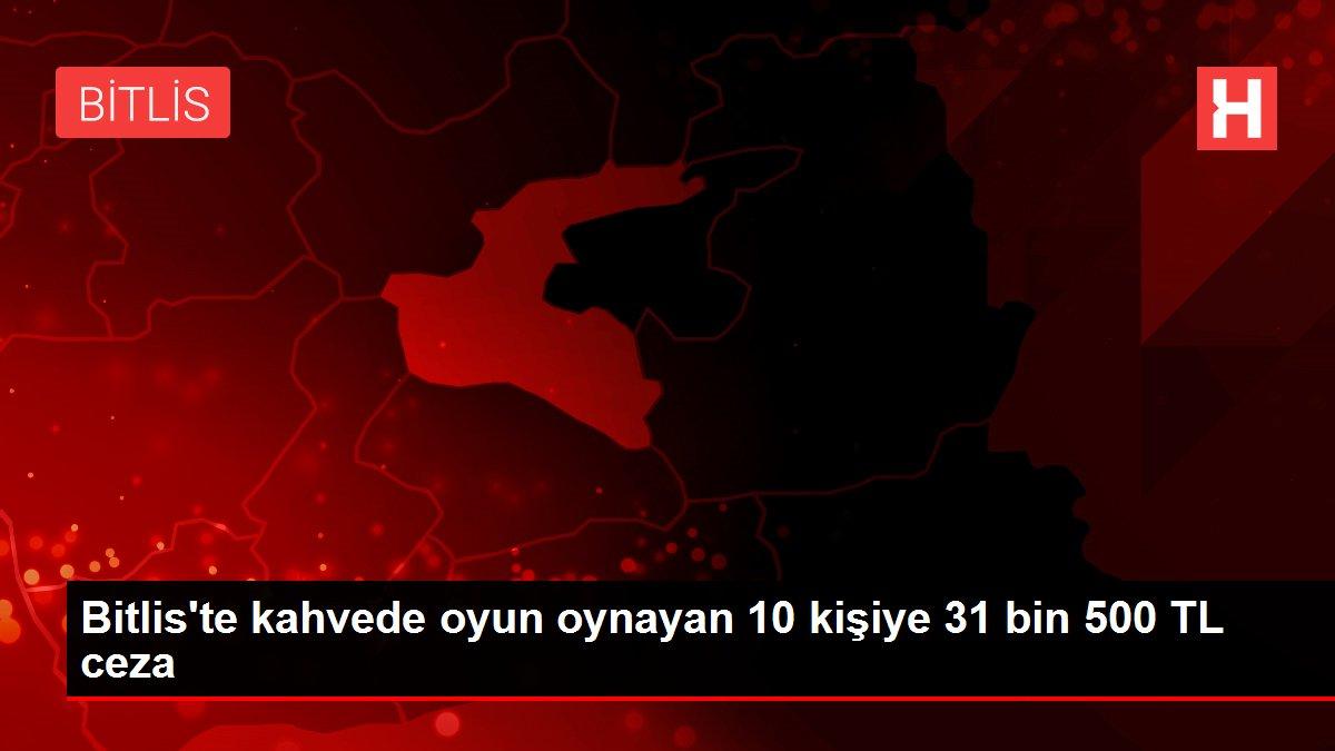 Bitlis'te kahvede oyun oynayan 10 kişiye 31 bin 500 TL ceza