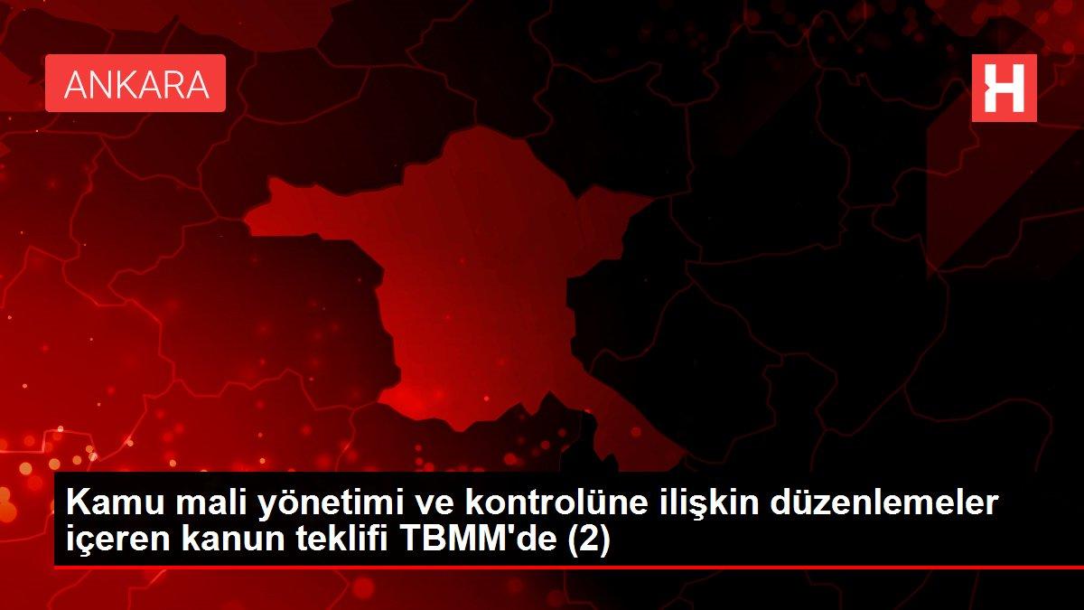 Kamu mali yönetimi ve kontrolüne ilişkin düzenlemeler içeren kanun teklifi TBMM'de (2)
