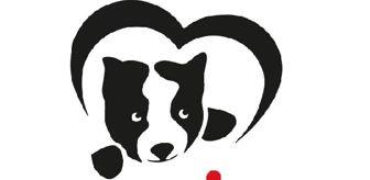 Ömür Gedik: Hepsiburada ve HAÇİKO iş birliğiyle hayvanlar için mama bağışı kampanyası