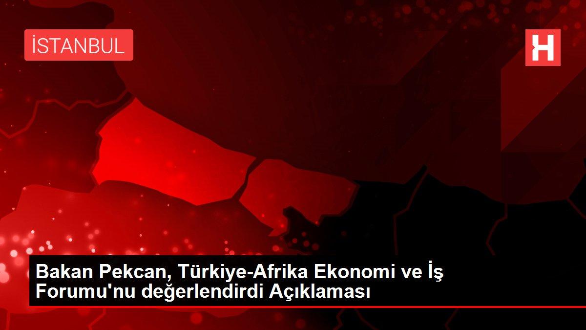 Bakan Pekcan, Türkiye-Afrika Ekonomi ve İş Forumu'nu değerlendirdi Açıklaması