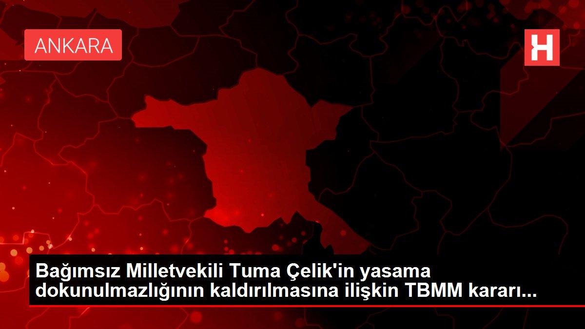 Bağımsız Milletvekili Tuma Çelik'in yasama dokunulmazlığının kaldırılmasına ilişkin TBMM kararı...