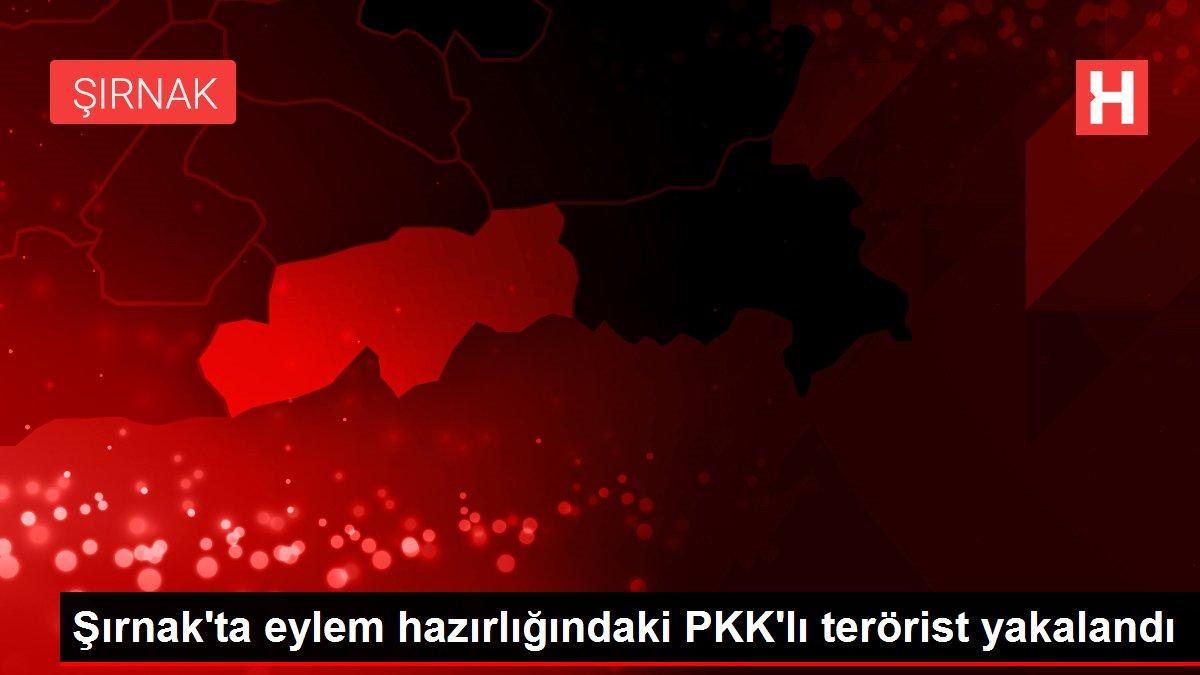 Son dakika haberleri   Şırnak'ta eylem hazırlığındaki PKK'lı terörist yakalandı