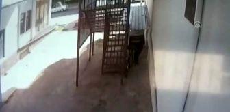 Aksaray: Bisiklet tekeri hırsızlığı güvenlik kamerasına yansıdı