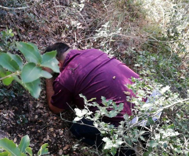1 yıldır ormanlık alanlarda saklanan şüpheli JASAT ekiplerince yakalandı