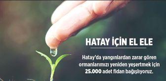 Şahinbey Belediyesi: Şahinbey Belediyesi'nden Hatay'a 25 bin fidan
