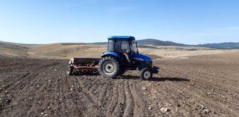 Derbent: Afyonkarahisar'da tohum toprakla buluştu