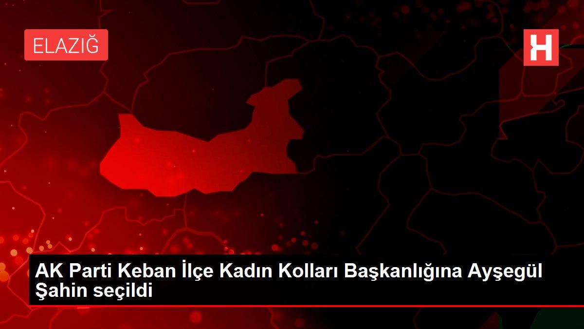 AK Parti Keban İlçe Kadın Kolları Başkanlığına Ayşegül Şahin seçildi