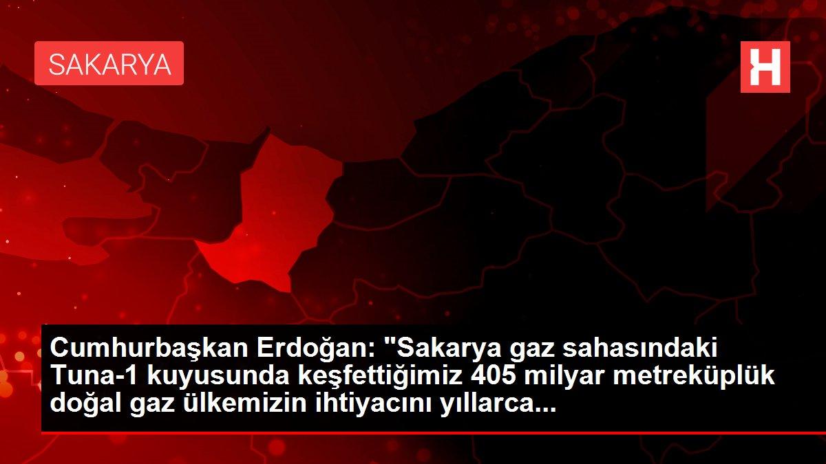 Cumhurbaşkan Erdoğan: 'Sakarya gaz sahasındaki Tuna-1 kuyusunda keşfettiğimiz 405 milyar metreküplük doğal...