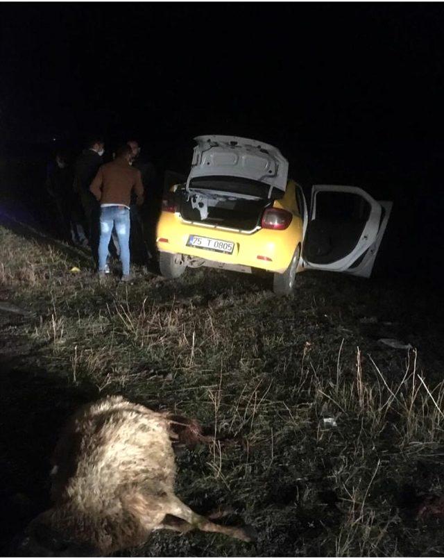 Yola aniden çıkan koyunların sebep olduğu kazada 2 kişi öldü, 2 kişi yaralandı