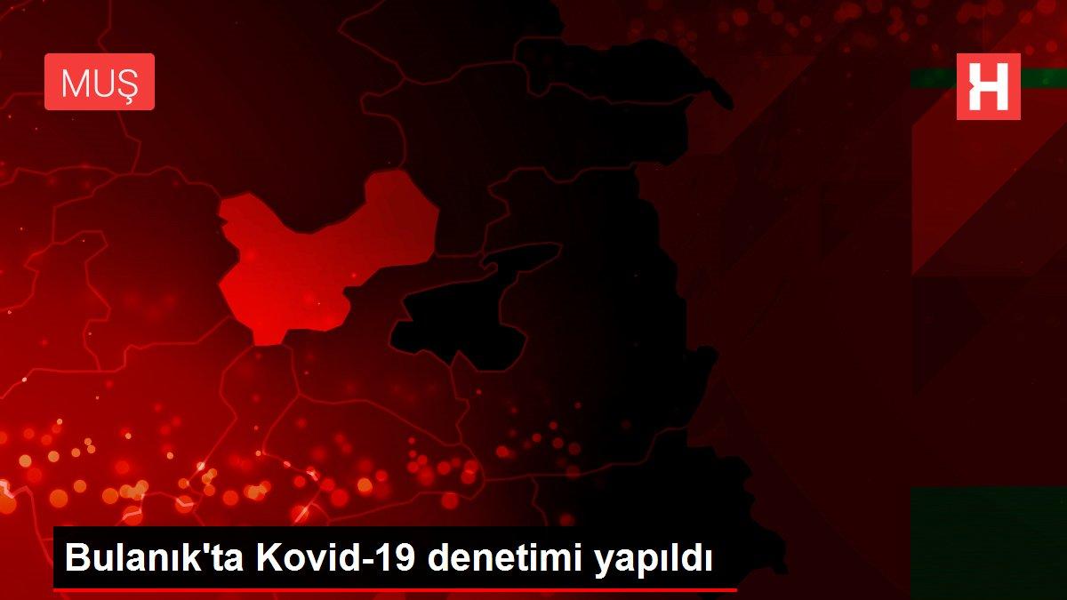 Bulanık'ta Kovid-19 denetimi yapıldı