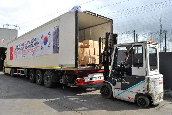 Güney Koreli firmadan Hatay'a 3 bin 43 zeytin fidanı