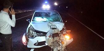 Ceylanpınar: Şanlıurfa'da trafik kazası: 2 ölü