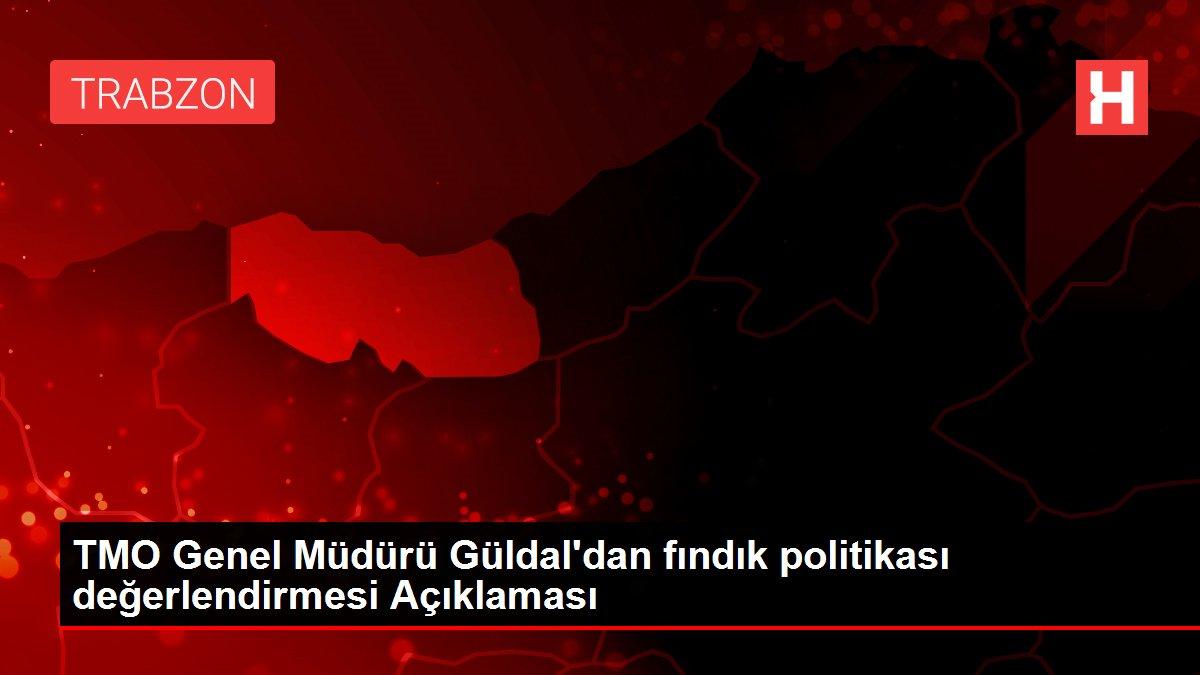 TMO Genel Müdürü Güldal'dan fındık politikası değerlendirmesi Açıklaması