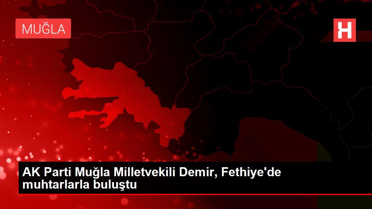 AK Parti Muğla Milletvekili Demir, Fethiye'de muhtarlarla buluştu