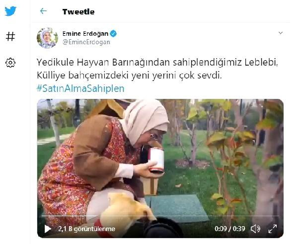 Son dakika... Emine Erdoğan'ın sahiplendiği 'Leblebi', Külliye bahçesinde