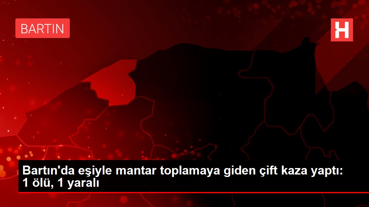 Bartın'da eşiyle mantar toplamaya giden çift kaza yaptı: 1 ölü, 1 yaralı