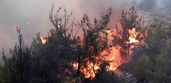 Hatay: Hatay'da çıkan orman yangını - Alevler yerleşim yerlerine sıçradı (3)