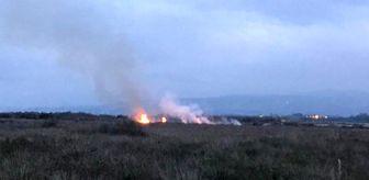 19 Mayıs: Kuş Cenneti sazlık alanda yangın