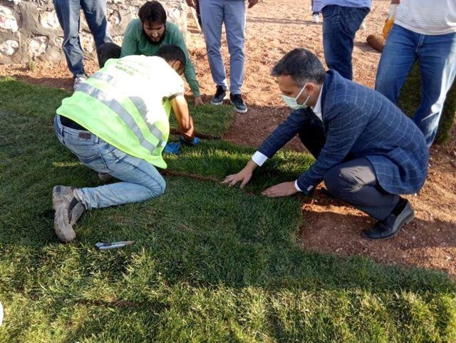 Yeşilyurt Belediyesi tarımsal üretim ve ar-ge sahasında 15 bin metrekare rulo çim üretildi