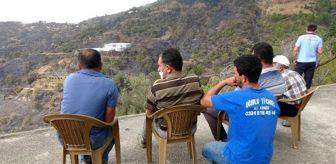 Mersin: Anamur'daki orman yangınında 150 hektar alan zarar gördü (2)