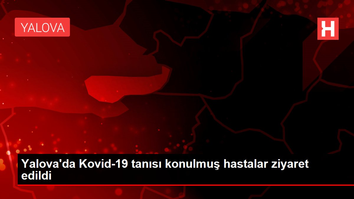 Yalova'da Kovid-19 tanısı konulmuş hastalar ziyaret edildi