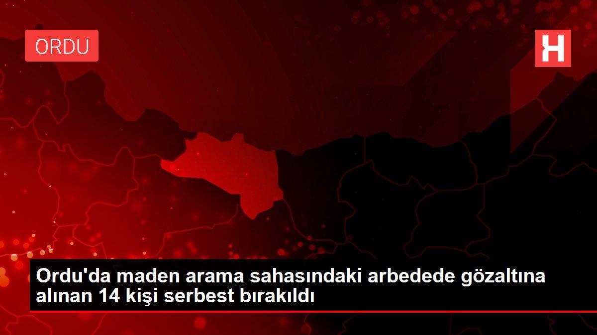 Son dakika: Ordu'da maden arama sahasındaki arbedede gözaltına alınan 14 kişi serbest bırakıldı