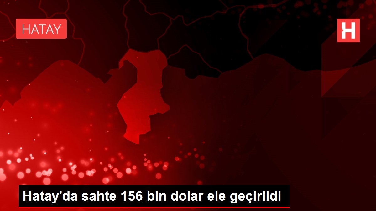 Hatay'da sahte 156 bin dolar ele geçirildi