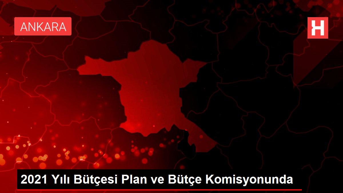 2021 Yılı Bütçesi Plan ve Bütçe Komisyonunda
