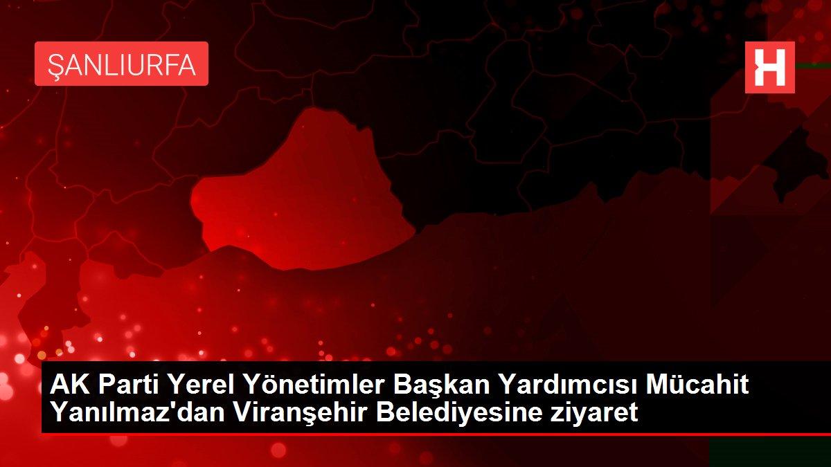 AK Parti Yerel Yönetimler Başkan Yardımcısı Mücahit ...