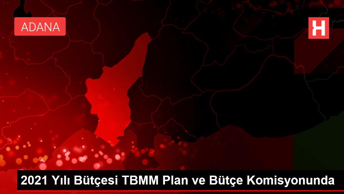 2021 Yılı Bütçesi TBMM Plan ve Bütçe Komisyonunda