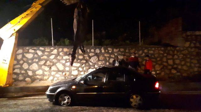 Otomobilin çarptığı at aracın içine girdi! Talihsiz hayvan telef olurken kazada 1 kişi yaralandı