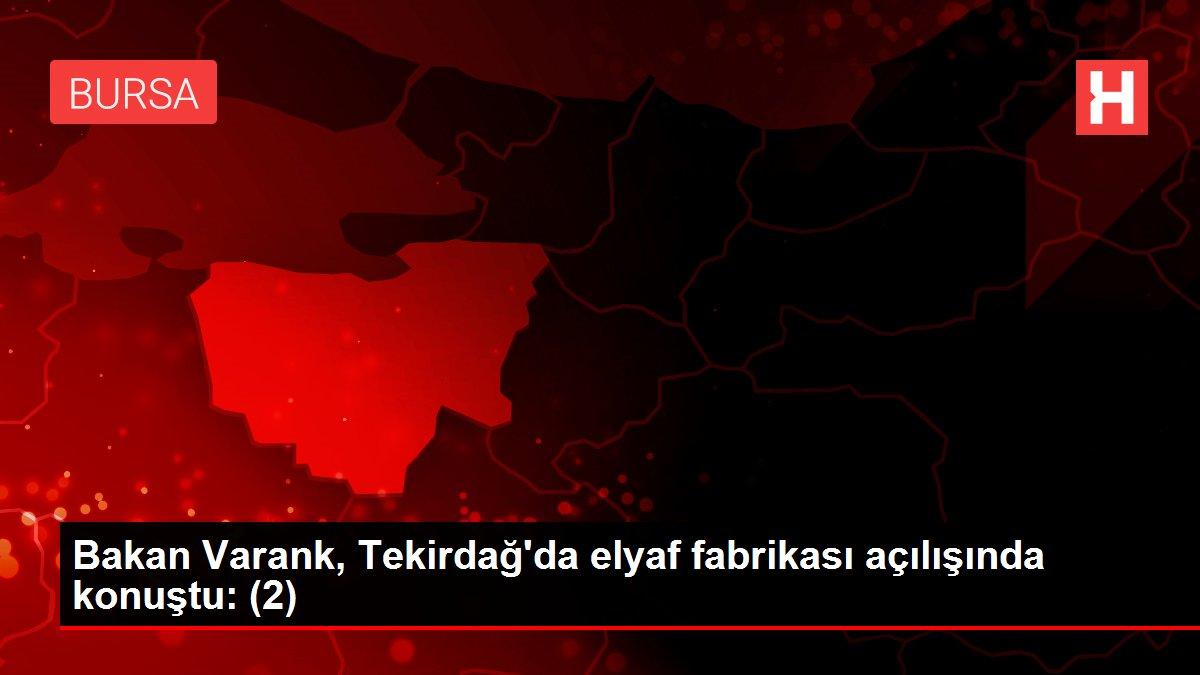 Bakan Varank, Tekirdağ'da elyaf fabrikası açılışında konuştu: (2)