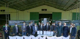 Hasan Doğru: Gaziantep'te sertifikalı tohum üretimine başlandı
