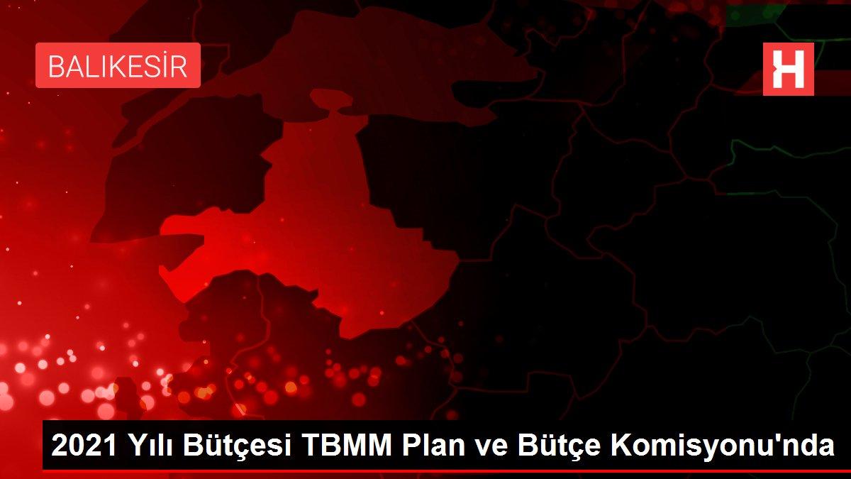 2021 Yılı Bütçesi TBMM Plan ve Bütçe Komisyonu'nda