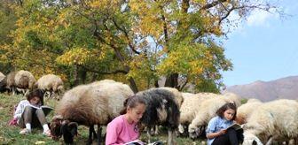 Bahçesaray: Hem koyun güdüyorlar hem de ders çalışıyorlar