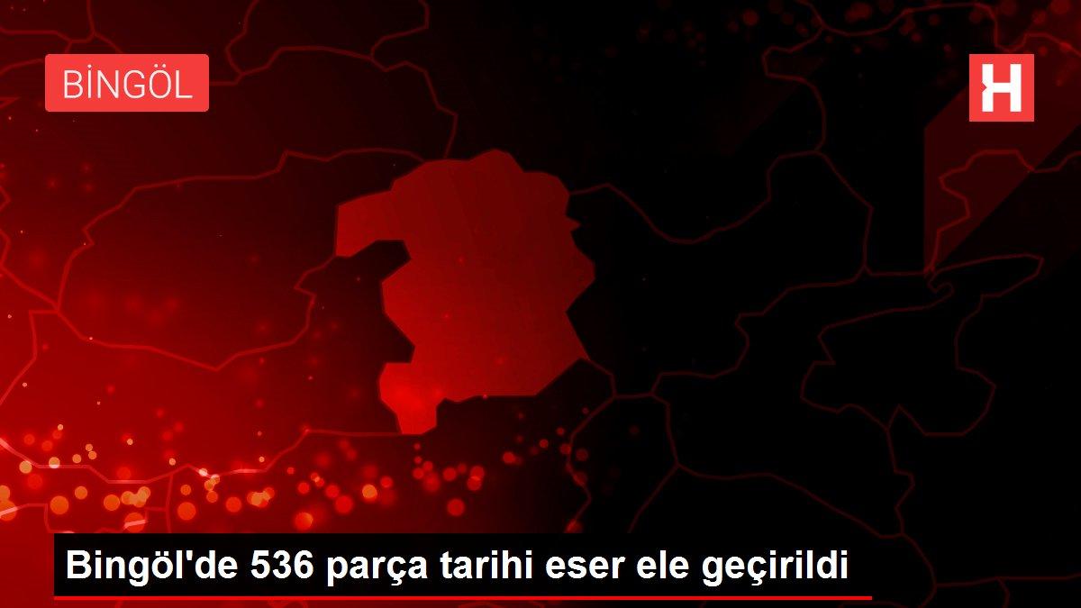 Bingöl'de 536 parça tarihi eser ele geçirildi