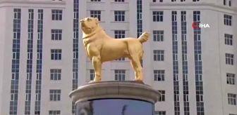Vladimir Putin: Türkmenistan Devlet Başkanı Berdimuhamedov başkente köpeğinin heykelini dikti
