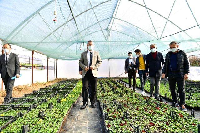 Yeşilyurt Belediye, kendi çiçeğini üretiyor