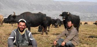 Bulut Aras: Sağır ve dilsiz 2 kardeş, 20 yıldır çobanlık yapıyor