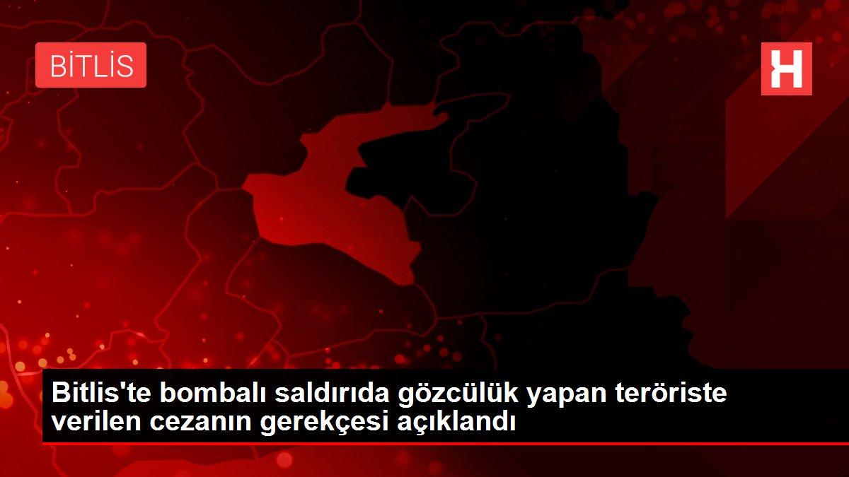 Bitlis'te bombalı saldırıda gözcülük yapan teröriste verilen cezanın gerekçesi açıklandı