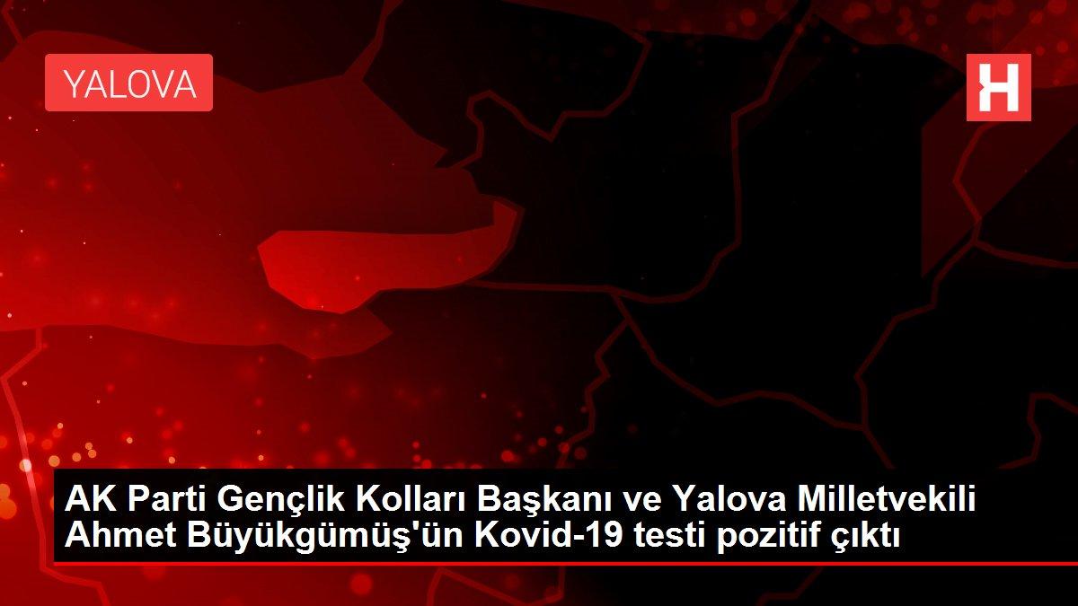 AK Parti Gençlik Kolları Başkanı ve Yalova Milletvekili Ahmet Büyükgümüş'ün Kovid-19 testi pozitif çıktı