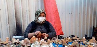 Karpuzlu: Havalar kurak gidince mantar fiyatları yüzde 100 zamlandı