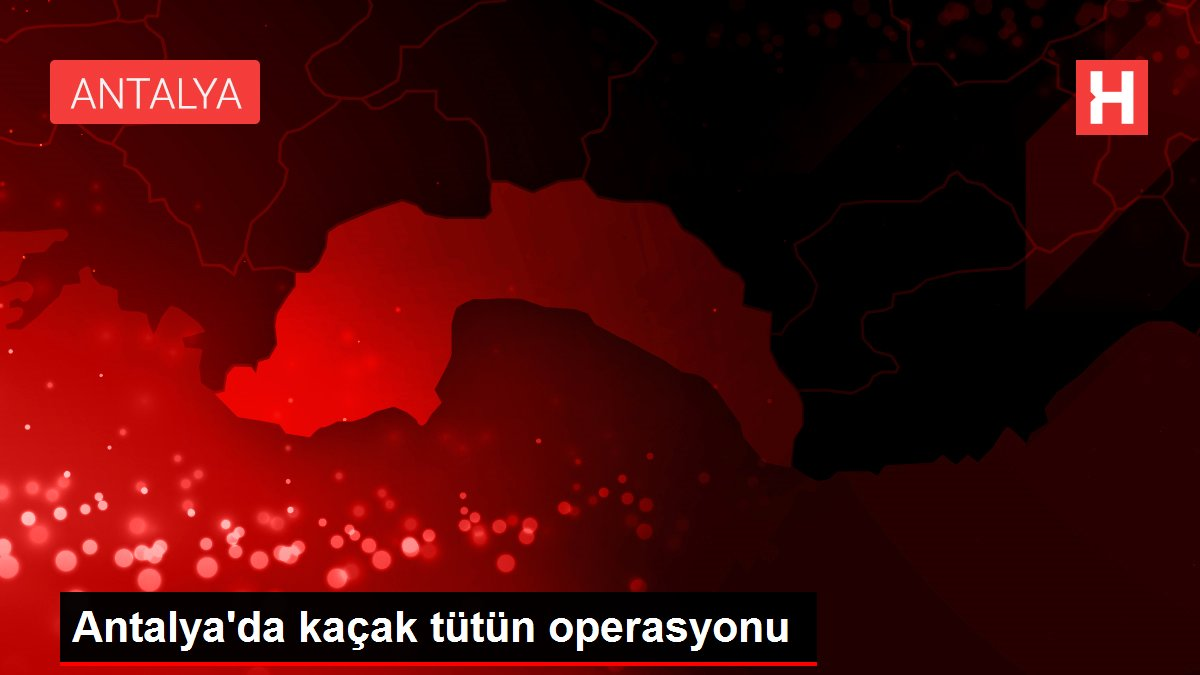 Son dakika gündem: Antalya'da kaçak tütün operasyonu