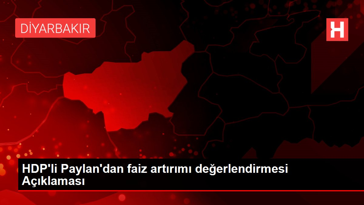 HDP'li Paylan'dan faiz artırımı değerlendirmesi Açıklaması