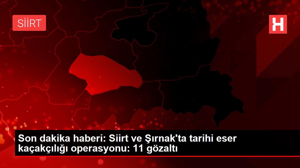 Son dakika haberi: Siirt ve Şırnak'ta tarihi eser kaçakçılığı operasyonu: 11 gözaltı