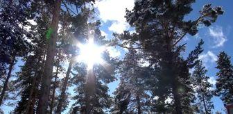 Kars: Beyaza bürünen Sarıkamış büyüledi